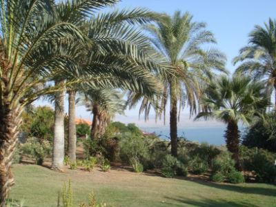Garden of Beatitudes