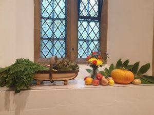 HARVEST WINDOW SILL