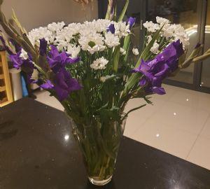 flowers dofe