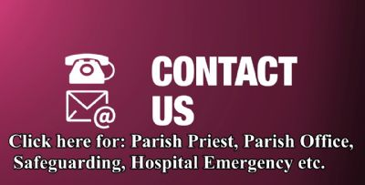 To Contact Us Page