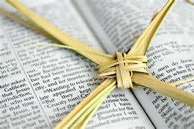 Palm Bible