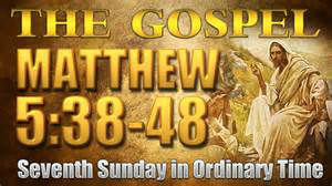 7th Sun Ordinary Time Matthew