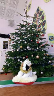 9occ tree