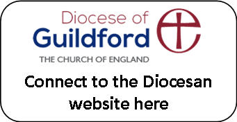 Connect to the Diocesan website button