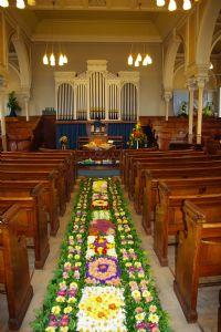 Carpet of Flowers 2010