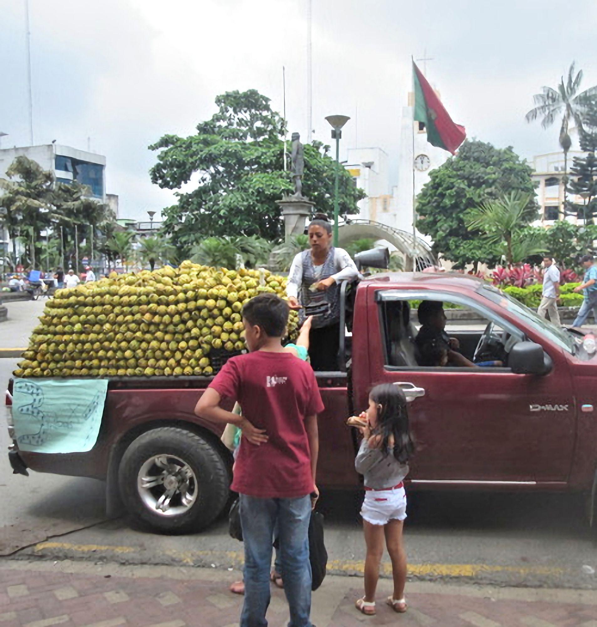 Fruit seller Santo Domingo