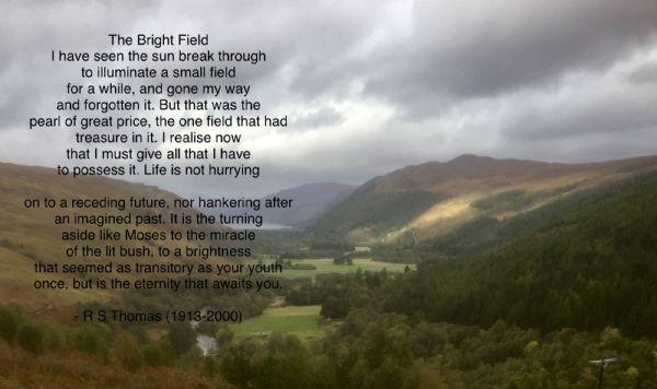 The Bright Field