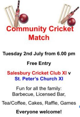 community cricket match 2019