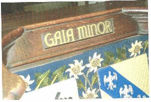 Gaia Minor Seat