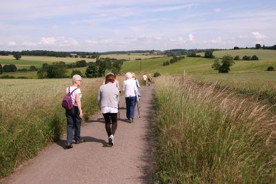 Sacombe Walk 1